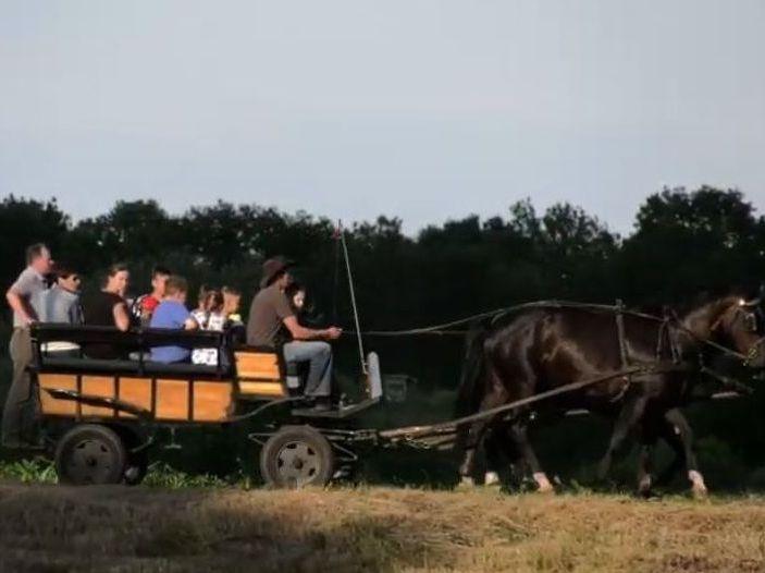 Wóz ciągnięty przez konie. Siedzi na nim kilkanaście osób.