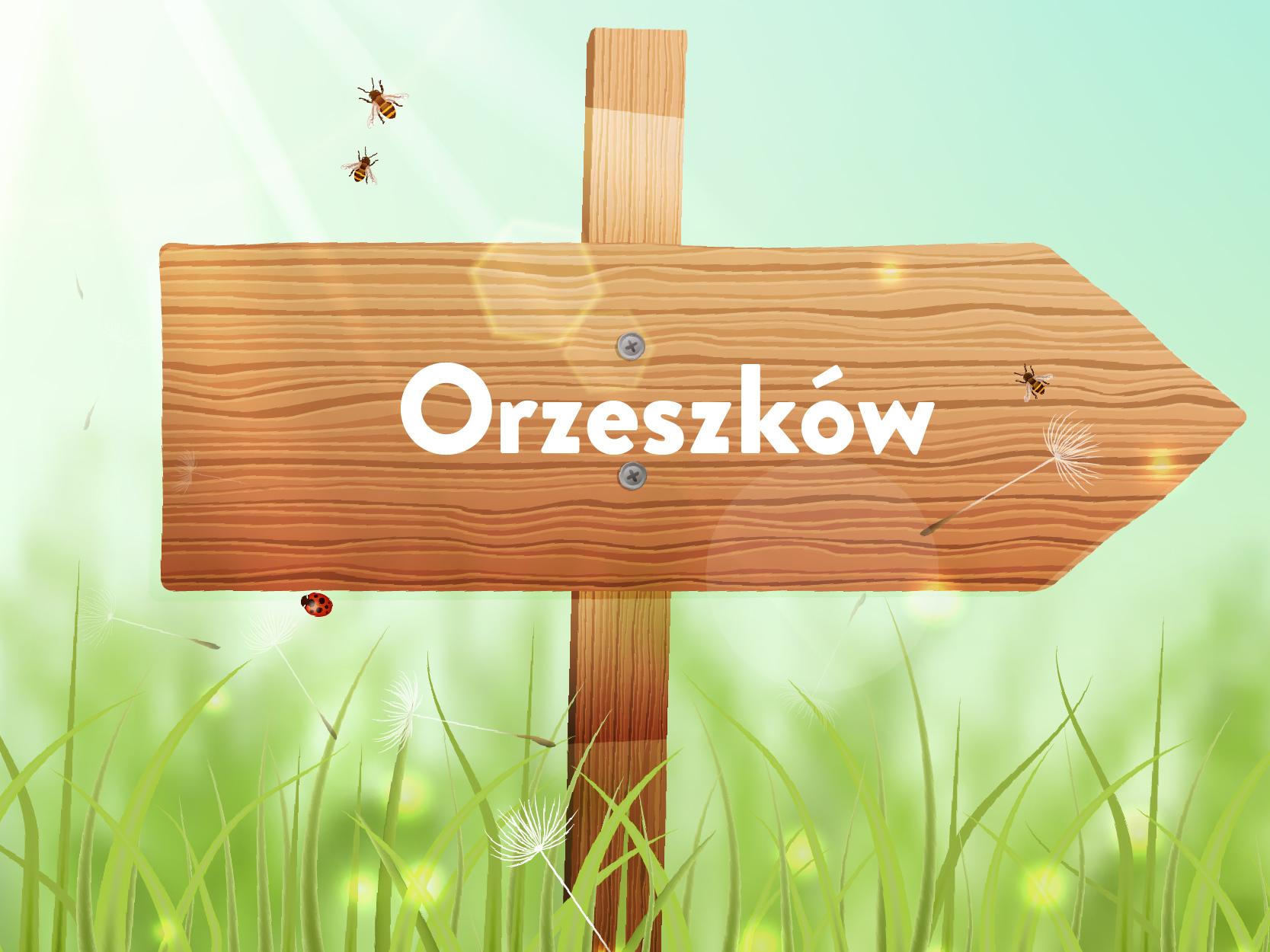 sołectwo Orzeszków