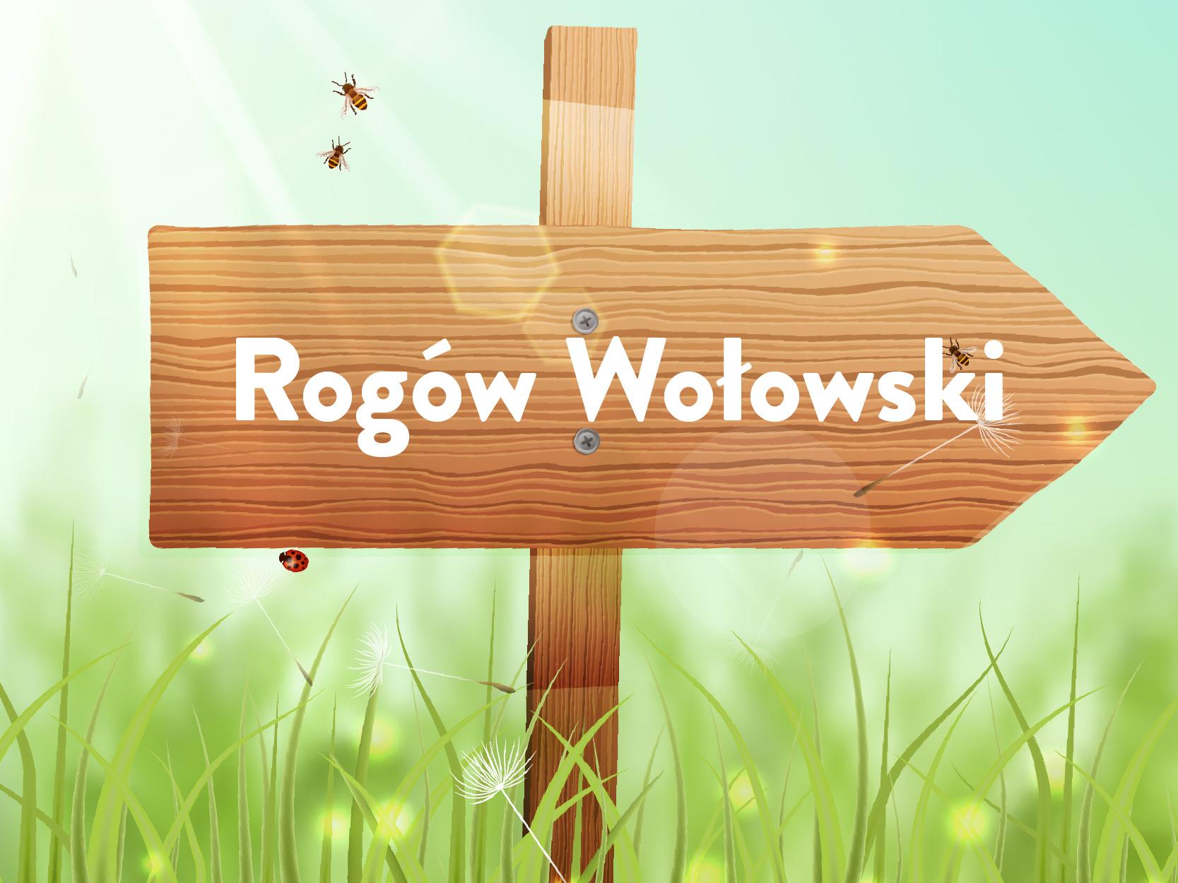 sołectwo Rogów Wołowski