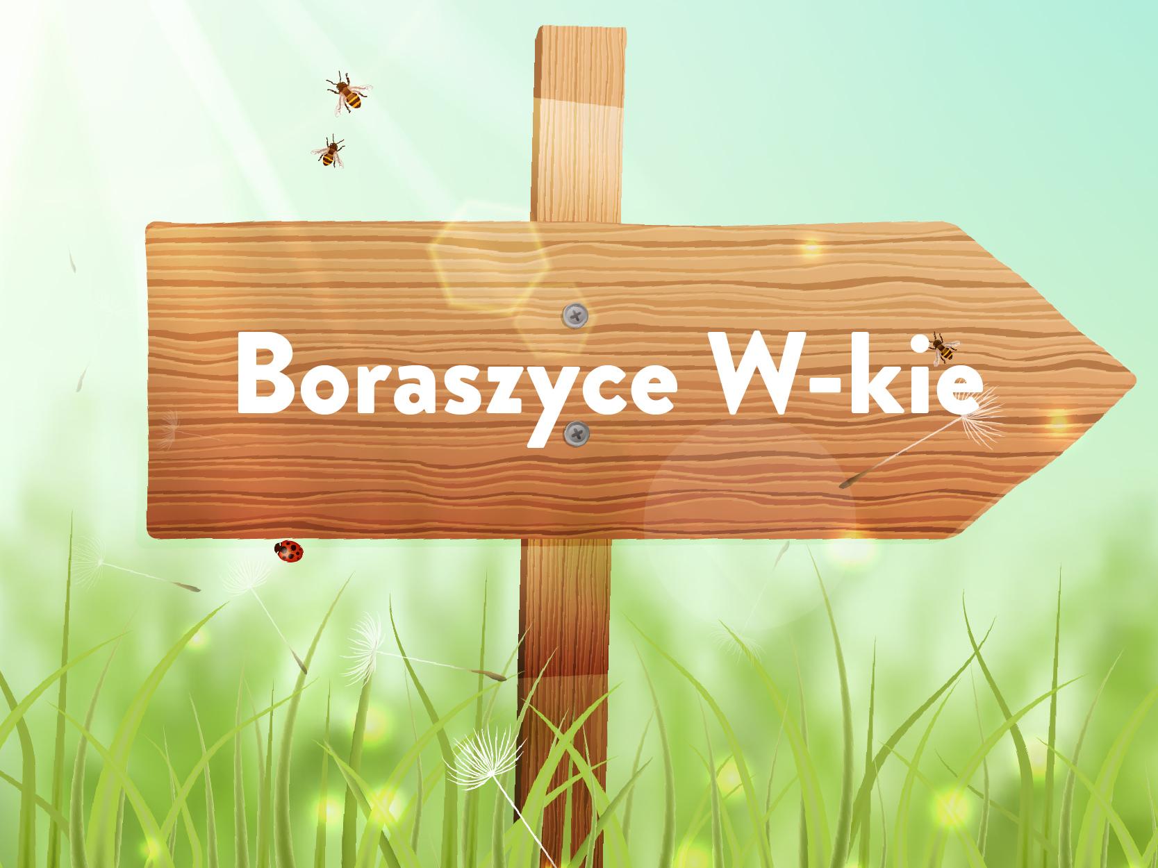 sołectwo Boraszyce Wielkie