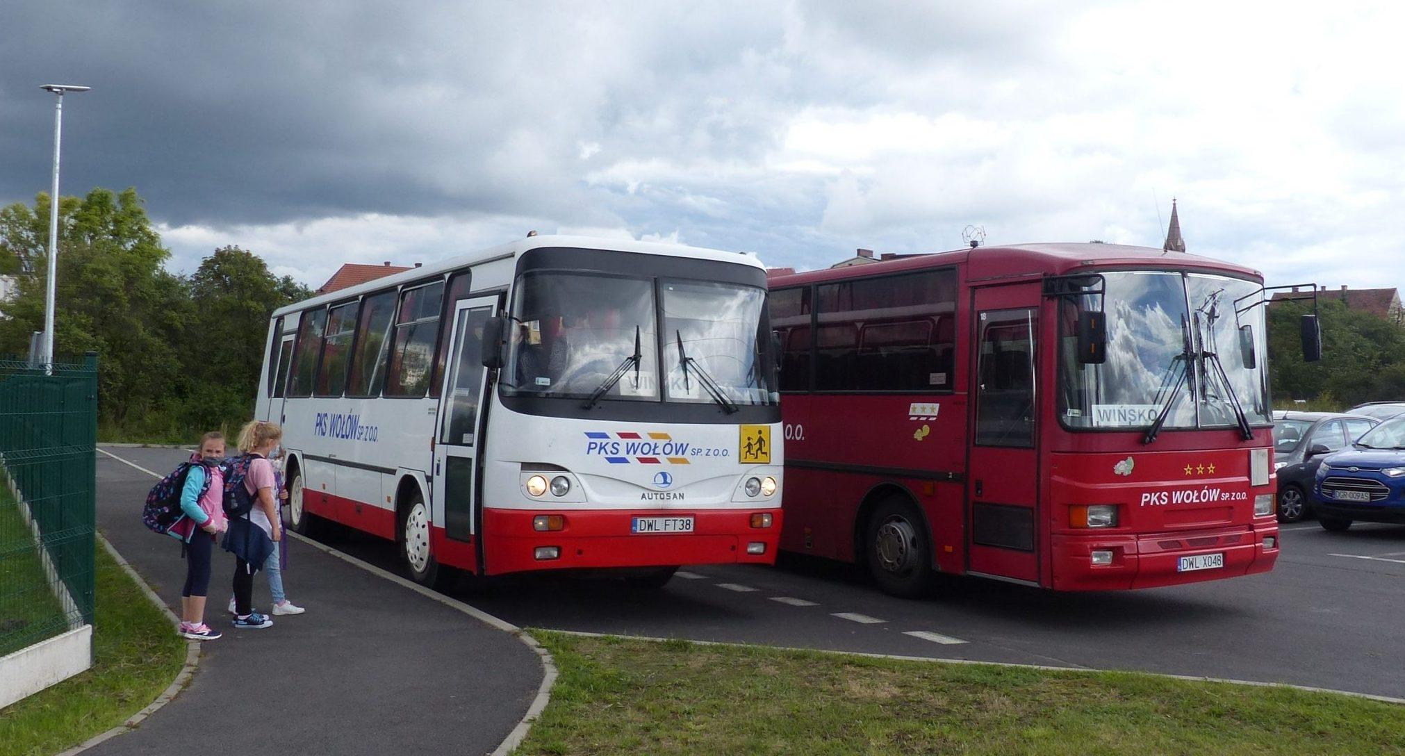 Dzieci wsiadające do autobusów szkolnych