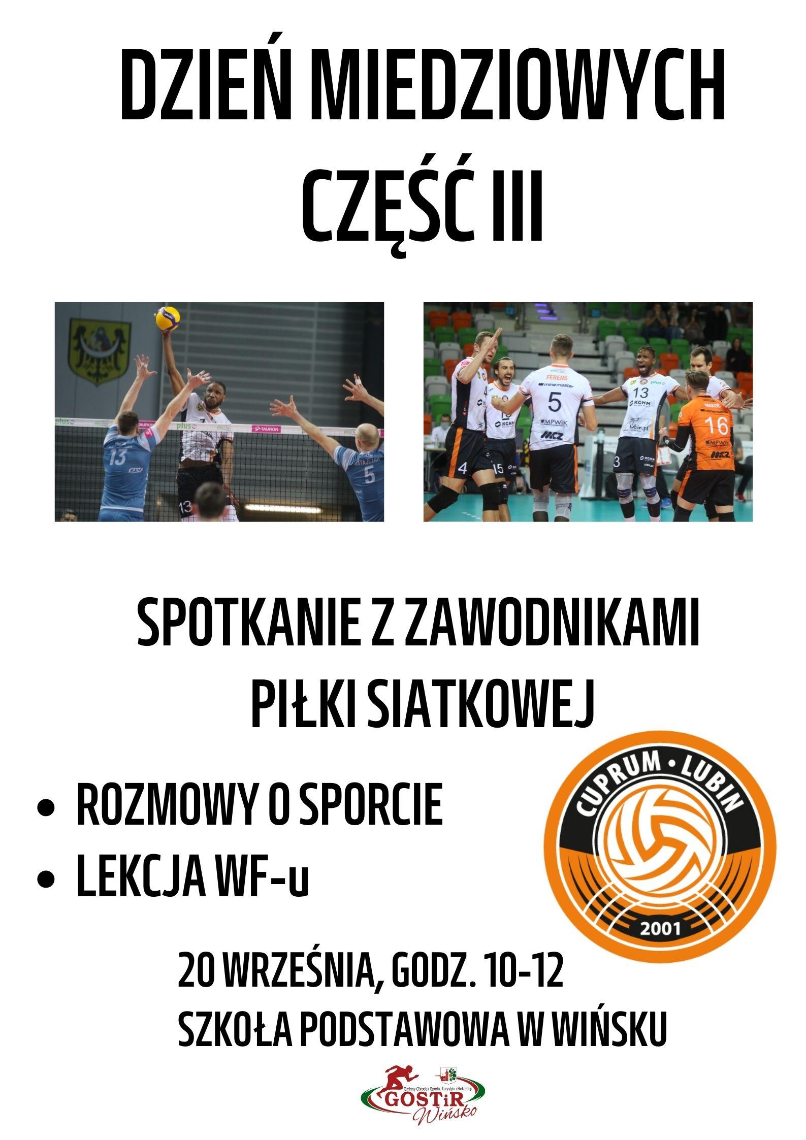 Plakat promujący Dzień Miedziowych